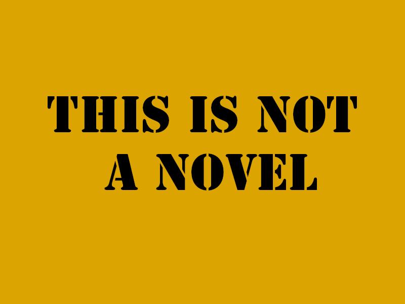 Non chiamatelo romanzo (esiste da anni)